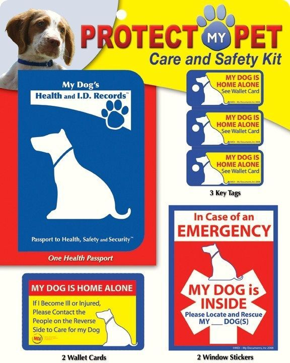 Protect My DOG Care and Safety Kit in Pet Supplies, Dog Supplies, Other Dog Supplies | eBay