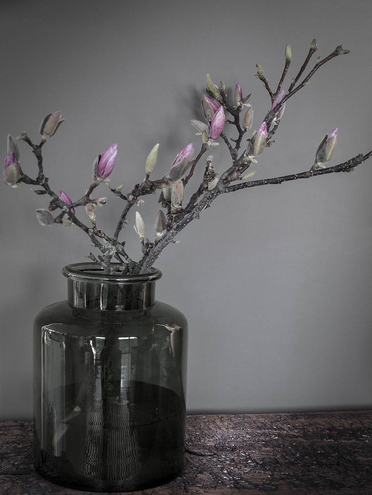 1000  images about bloemen on pinterest