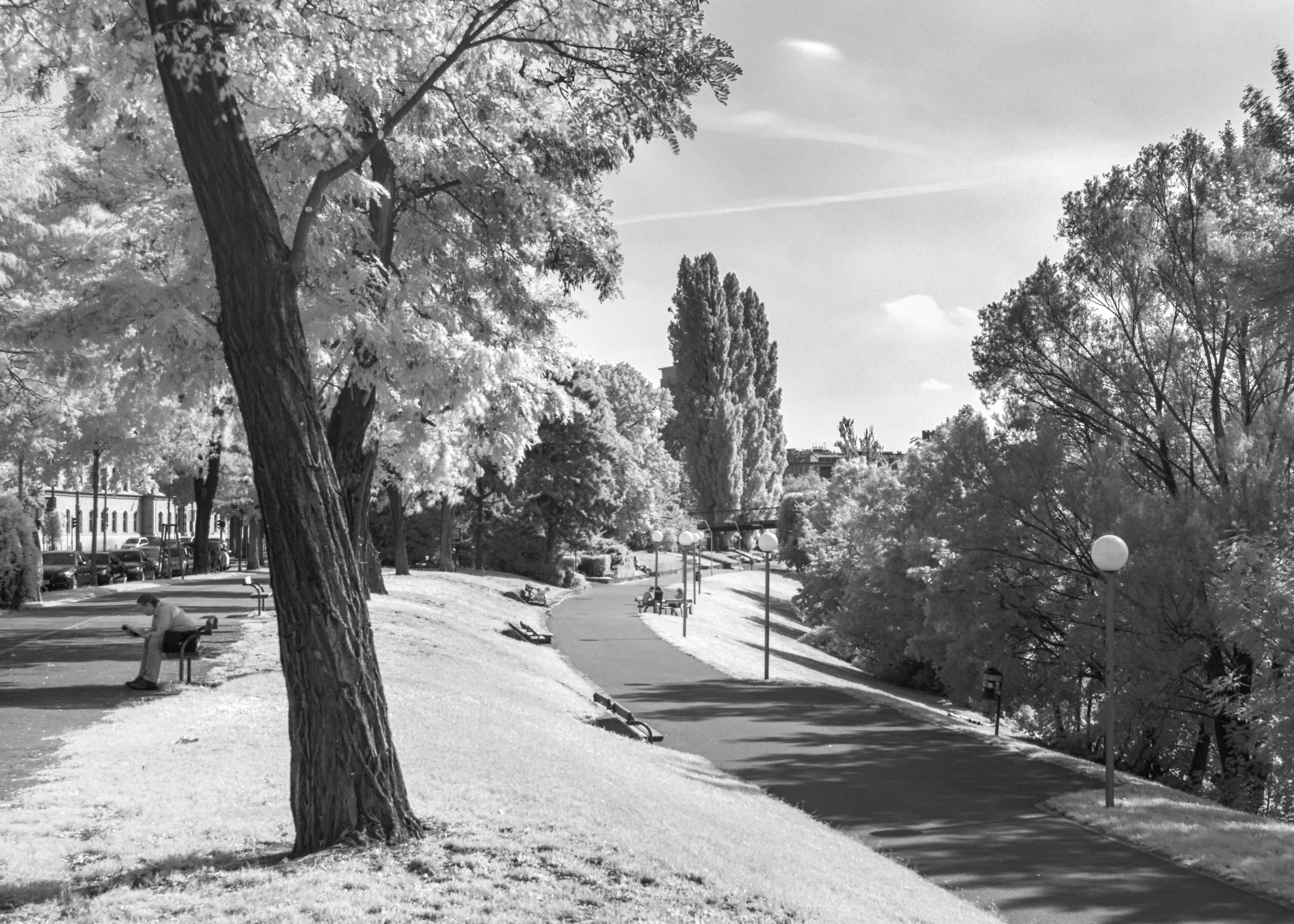 Ultragreen Vienna #infrared #danubecanal #donaukanal #vienna #canal #readingman