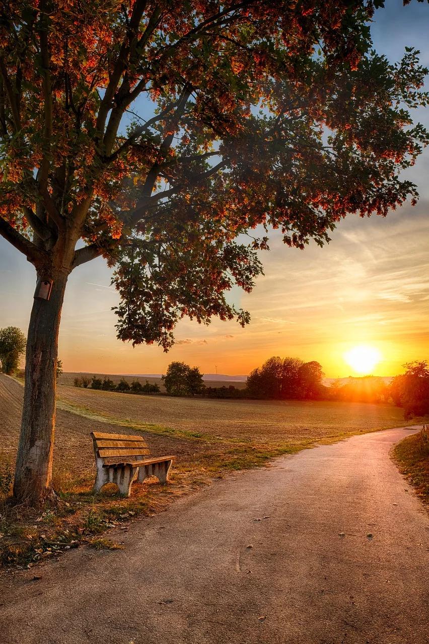 Free Image On Pixabay Away Road Bank Tree Landscape Scenery Photography Beautiful Nature Beautiful Landscapes