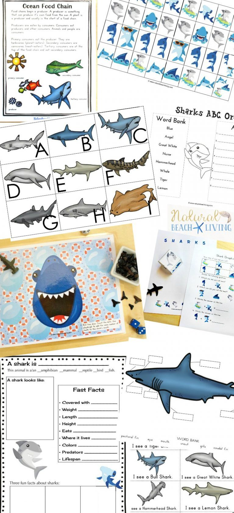 The Best Shark Printable Activities For Kids Shark Lesson Plans Natural Beach Living Shark Activities Printable Activities For Kids Science Activities For Kids [ 1679 x 768 Pixel ]