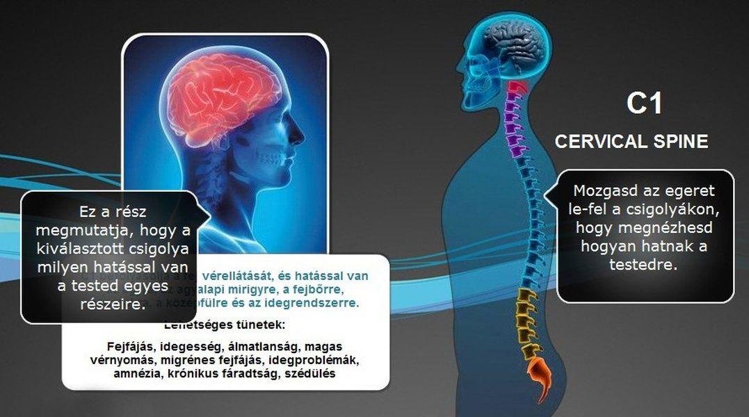 holter magas vérnyomás ellen előadás a magas vérnyomás kezeléséről