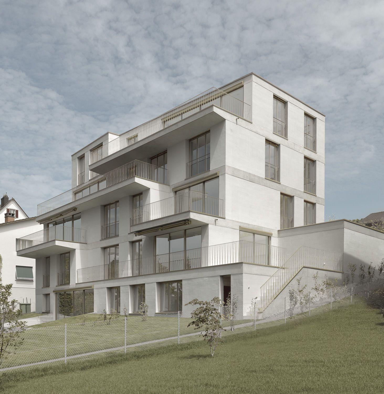 mathis kamplade architekten wohnhaus in feldmeilen arc