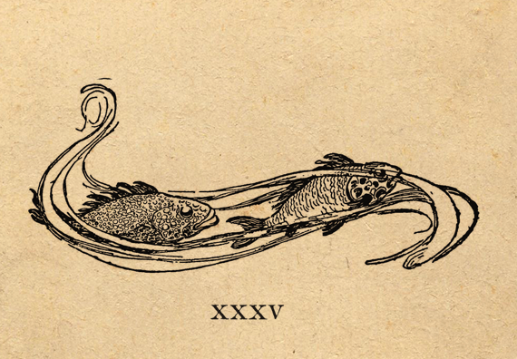 Illustration by Jessie Wilcox Smith from 'A Child's Garden of Verses' by Robert Louis Stevenson. Image features 2 fishes swimming in swirly water. http://www.amazon.com/gp/product/1447448952/ref=as_li_tl?ie=UTF8&camp=1789&creative=9325&creativeASIN=1447448952&linkCode=as2&tag=reaboo09-20&linkId=AIWWRJBS2GY4KE25