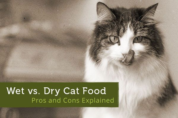 pros and cons of a dry Home blog beer brewing dry yeast vs liquid yeast  pros and cons: dry  yeast  includes everything you need to start making yeast starters like a pro  dry.