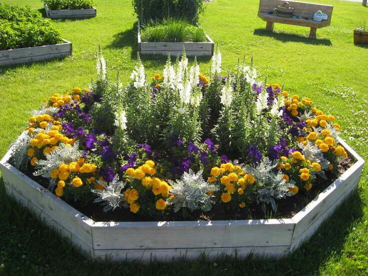 22++ Annual flower bed ideas ideas in 2021