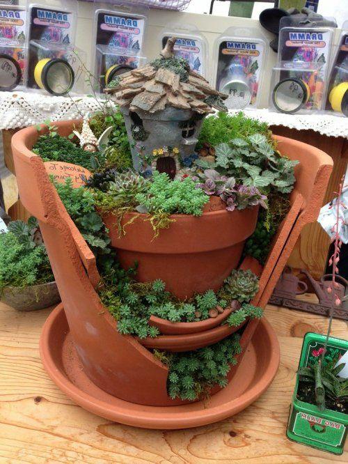 Minigarten Mit Sukkulenten Und Gartenzwerg | Zukünftige Projekte ... Mini Garten Aus Sukkulenten Selber Machen