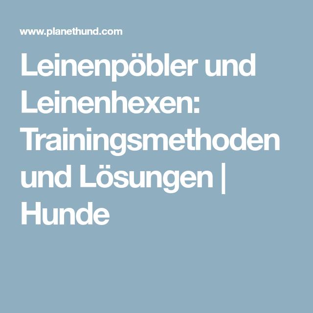 Leinenpöbler und Leinenhexen: Trainingsmethoden und Lösungen | Hunde