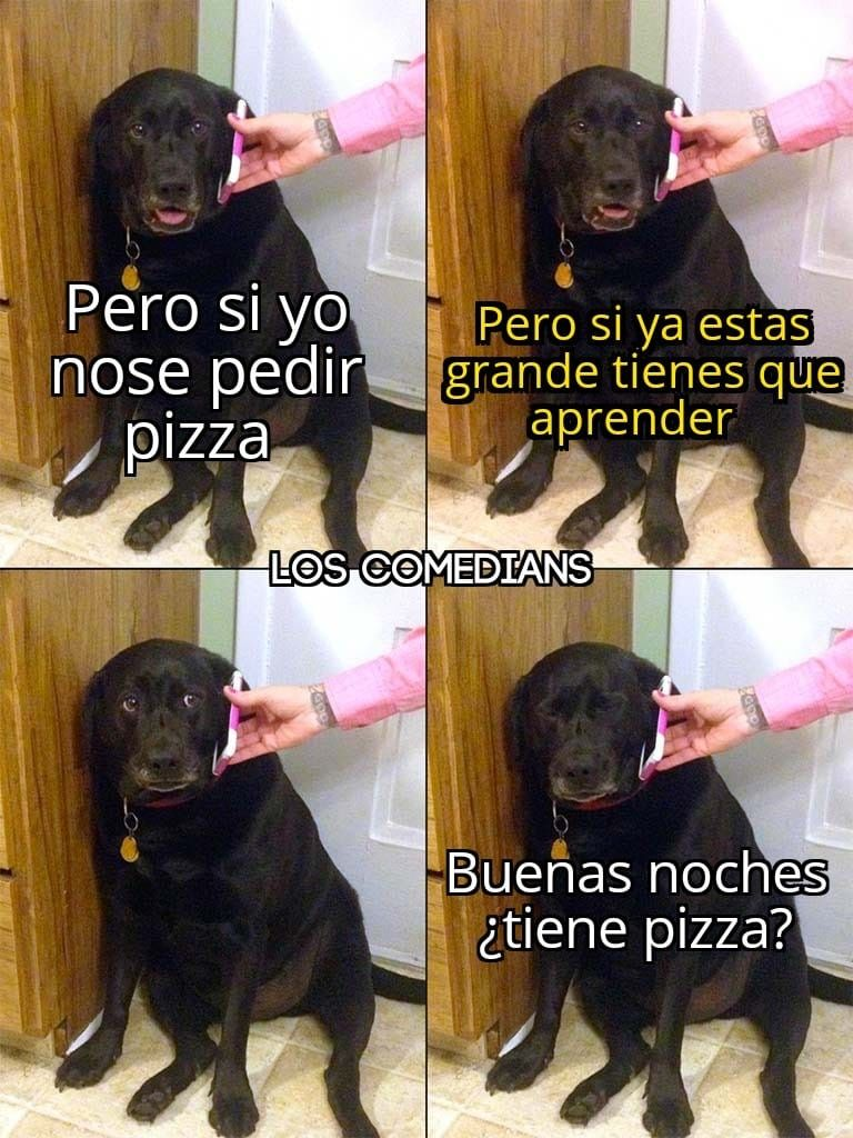 Pin By Romina Gallegos Chivilches On Memes Funny Images Funny Cartoons New Funny Videos