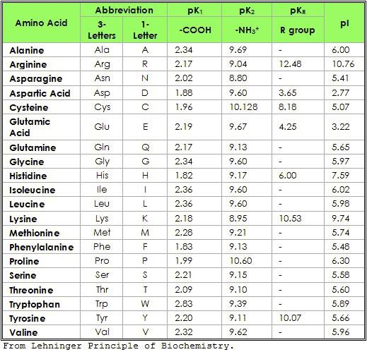 pi of amino acid - חיפוש ב-Google GRE Pinterest Organic - amino acid chart