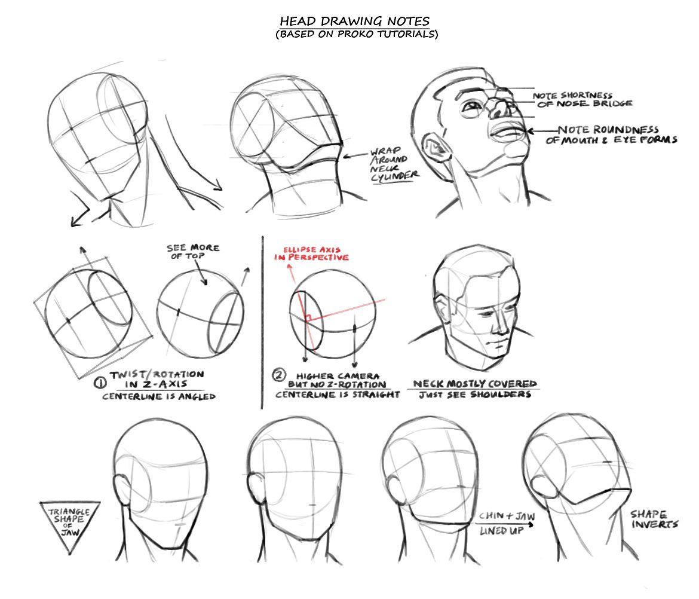 Will Burns Drawing heads, Head anatomy, Character design