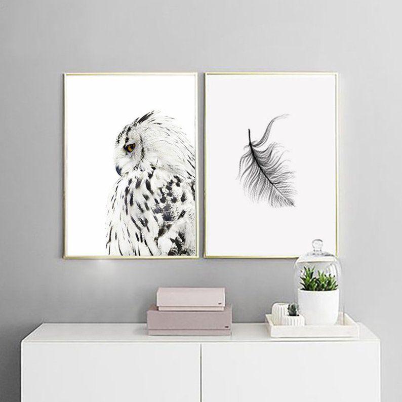 картинки для плакатов совы одновременно