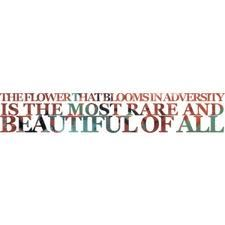 Mulan- the flower that blooms in adversity is the most rare and beautiful of all!!