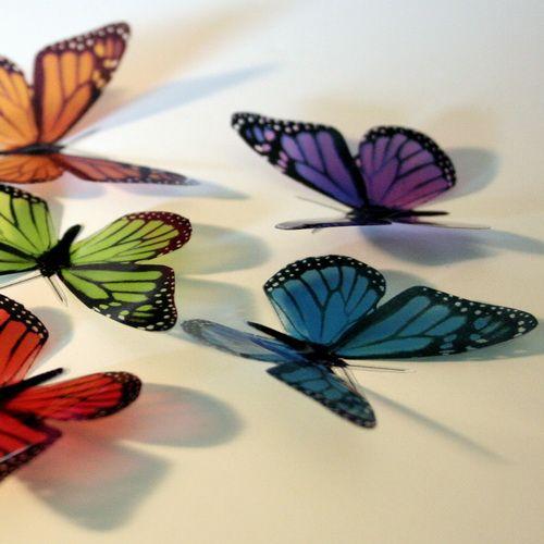 Butterfly Wallpaper, Beautiful