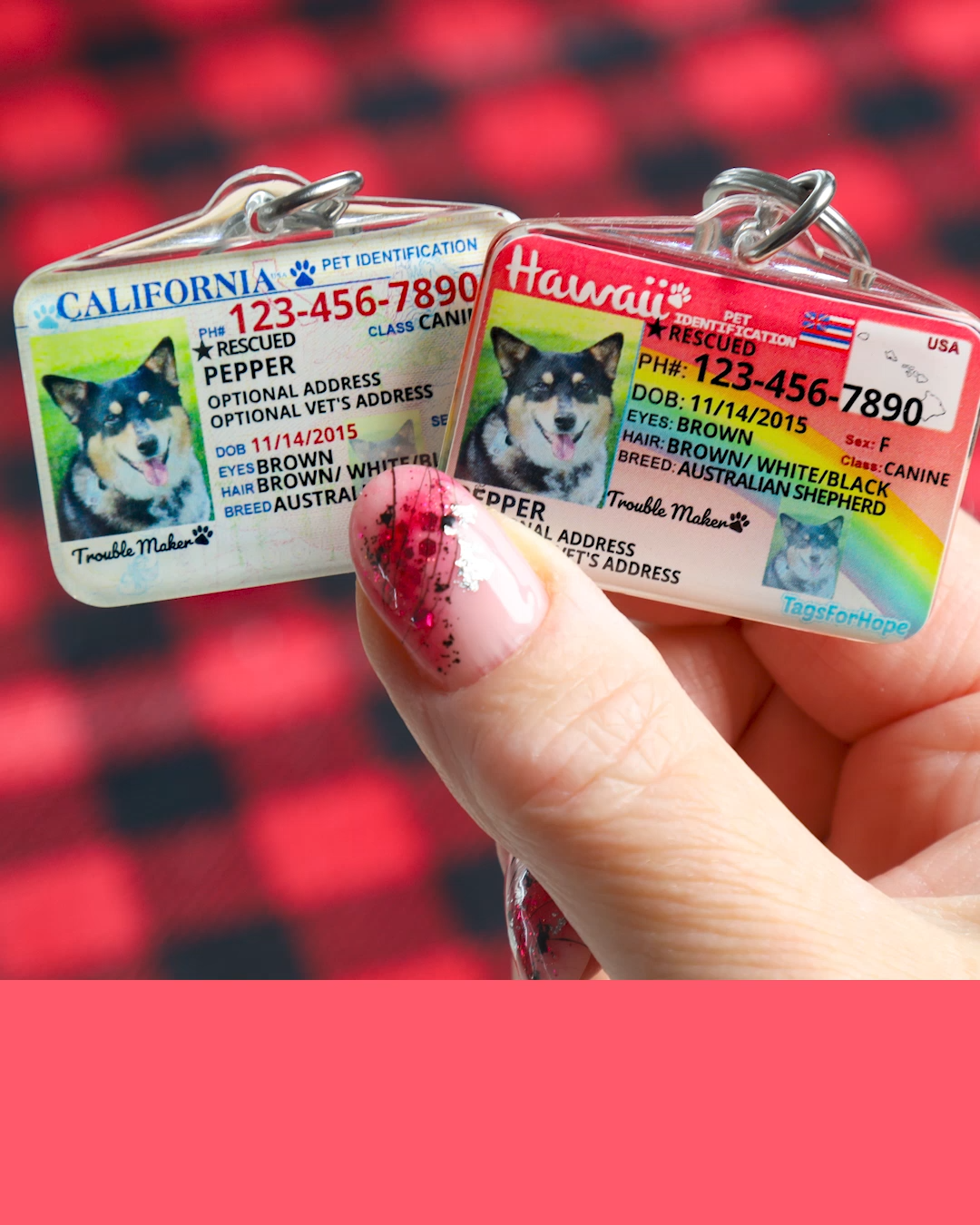 Designing A Pet Id Tag Is Fun And Easy Video Pet Id Tags Pet Id Diy Dog Stuff