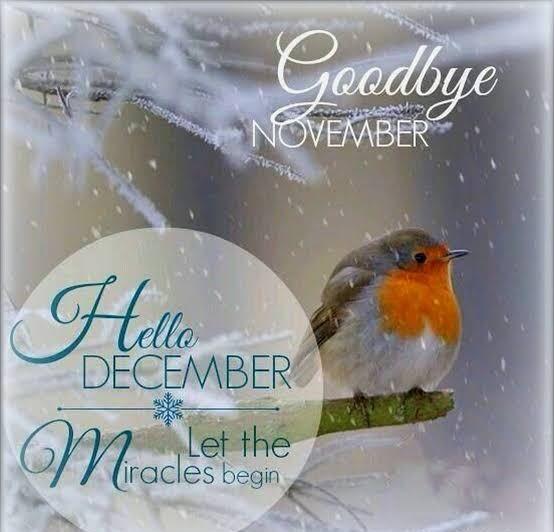 Welcome December and Goodbye November Photos #hellonovemberwallpaper Welcome December and Goodbye November Photos #hellodecemberwallpaper