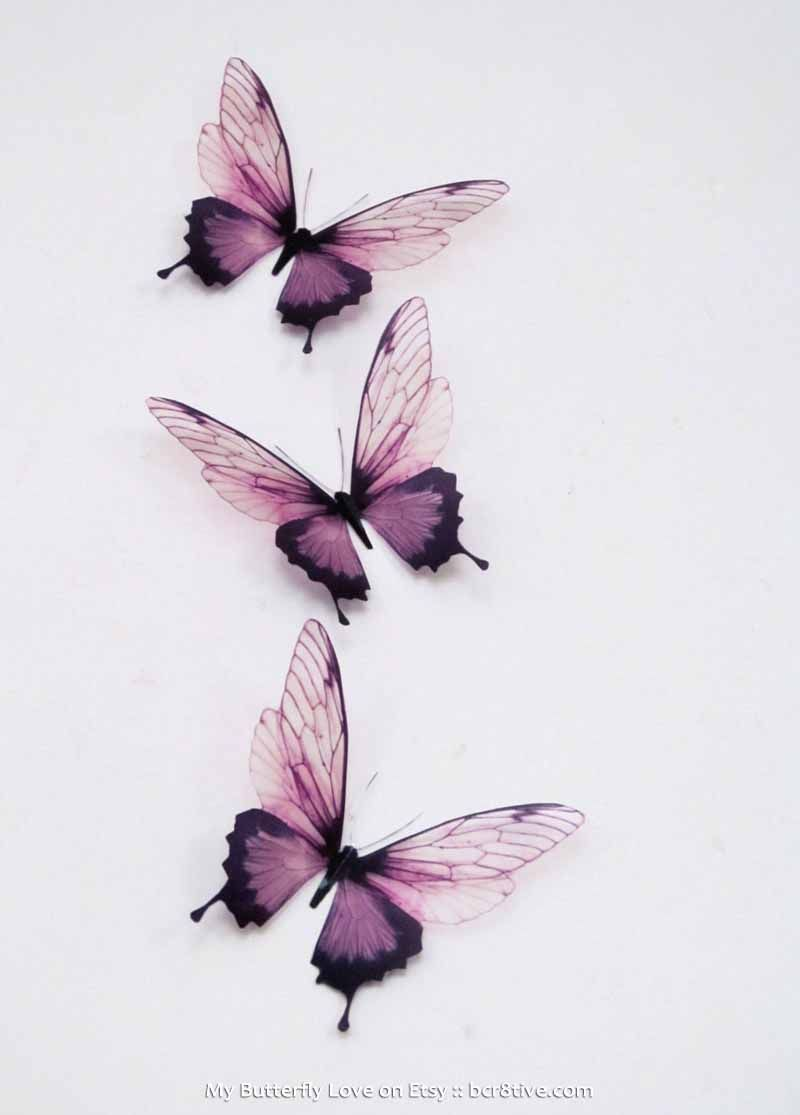 Creative butterfly decor butterfly wall butterfly and walls for Butterfly design on wall