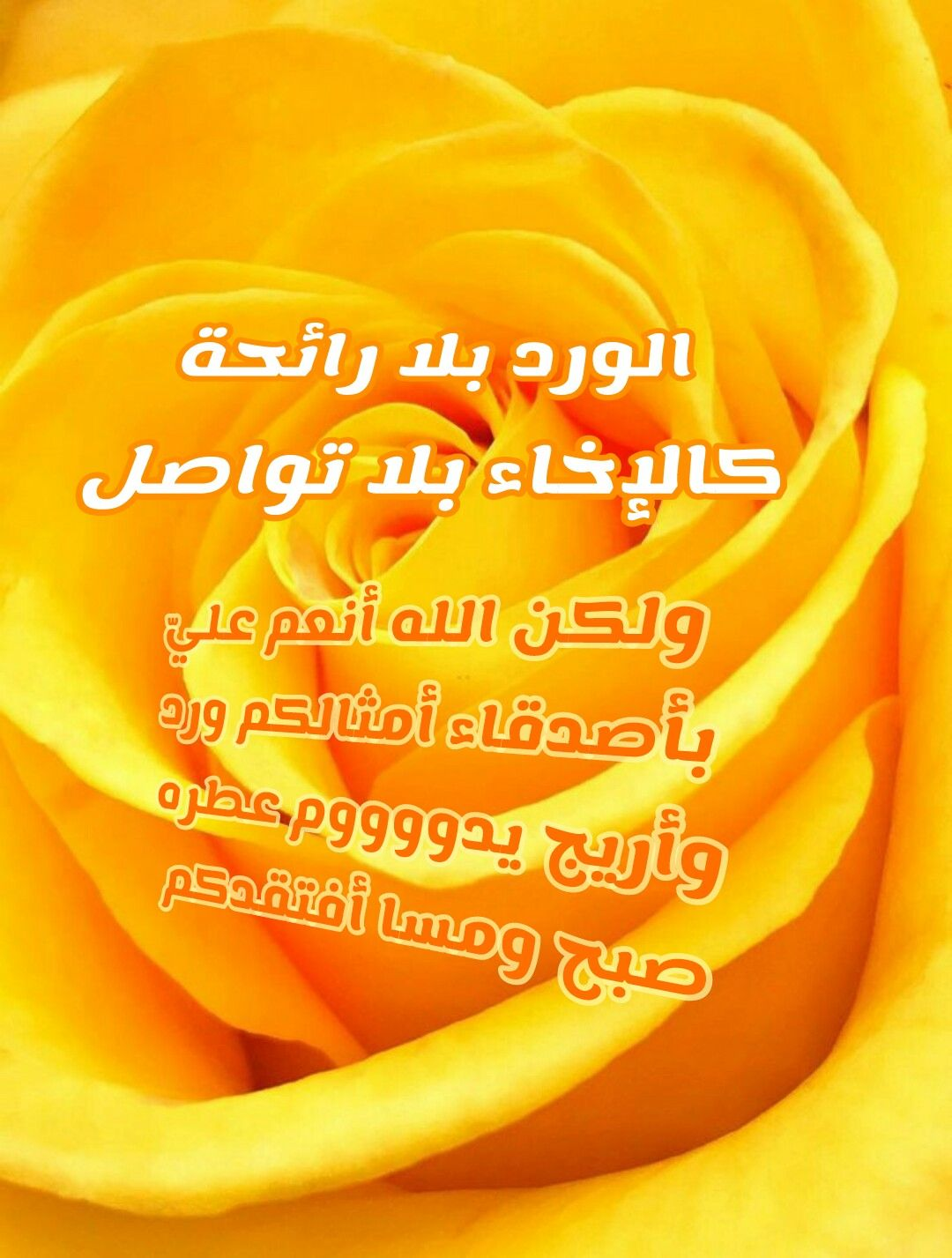 Pin By Latifa Elkheshen On Arabic Words Arabic Words Words Arabic
