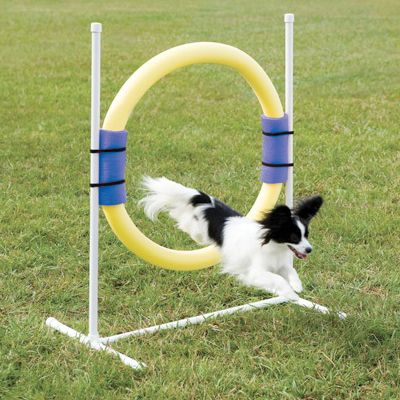 Agility Ring Jump Made Of Soft Safe Lightweight Material