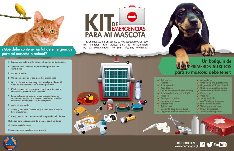 Kit de Emergencias para tu mascota