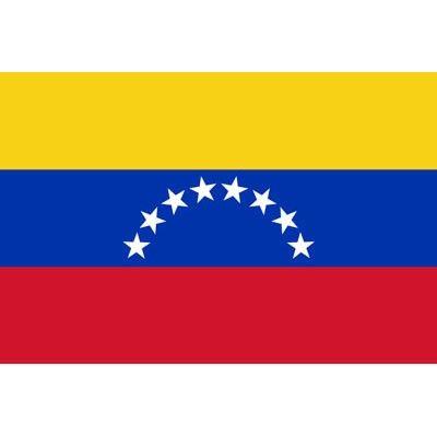 Mi Bandera Venezuela Bandera De Venezuela Bandera Nacional De