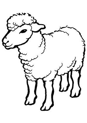 Ausmalbild Schaf Zum Kostenlosen Ausdrucken Und Ausmalen Fur Kinder Ausmalbilder Malvorlagen Ausmalen In 2020 Schaf Zeichnen Ausmalbilder Tiere Schafe Cartoon