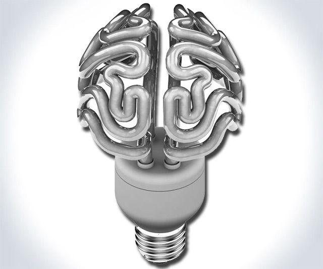 The Brain Bulb | Products I Love | Pinterest