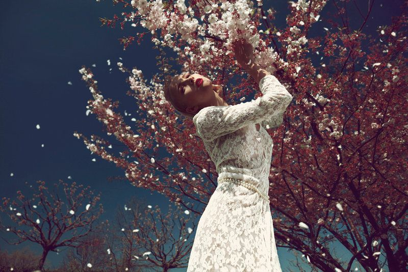 cherry blossom tree by Rinksy on DeviantArt
