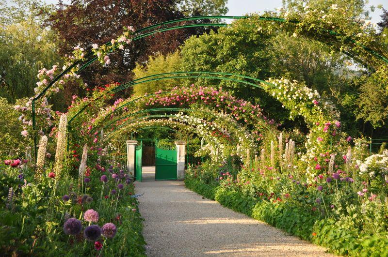 Grande Allee Du Jardin De Monet Les Arceaux Aux Roses Grande Allee Jardins Monet