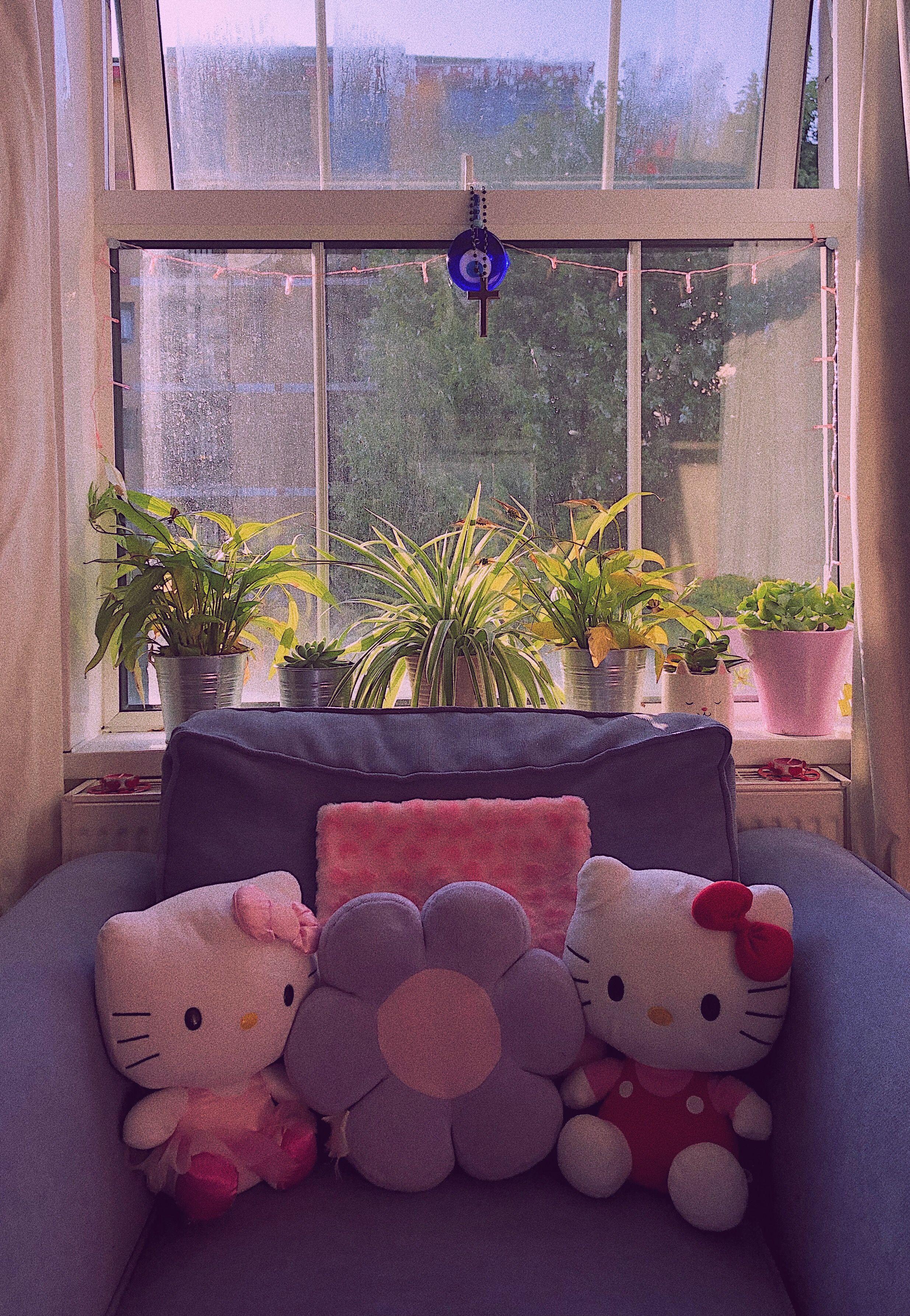 Fresh plants hello kitty Y2k room window in 2020 | Hello ...