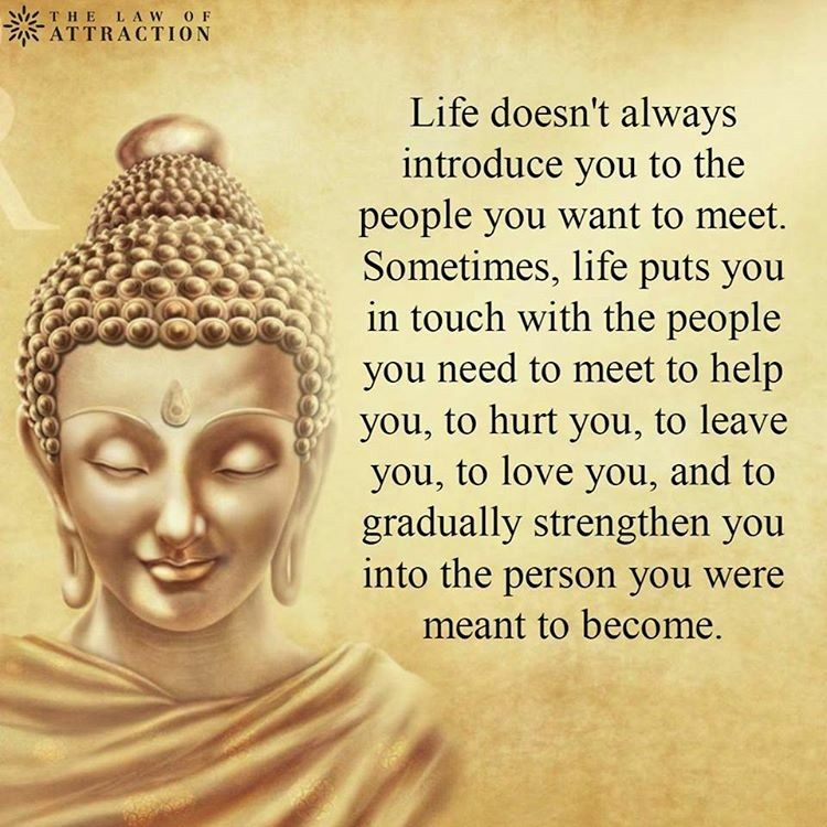 College Quotes, Buddha Quote, Buddha Zen, Nice Quotes, Inspirational Quotes,  Complex Ptsd, Life Decisions, Deep Thinking, Inner Peace