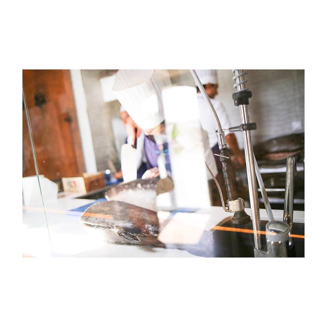 Genial Cocinas Cadiz Fotos Cocinas Moreno Muebles De Cocina  # Muebles Rogelio Gurrea