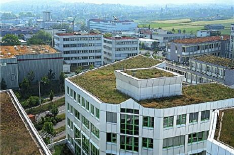 Greenroofs Com Industry Support Green Roof Sky Garden Roofing