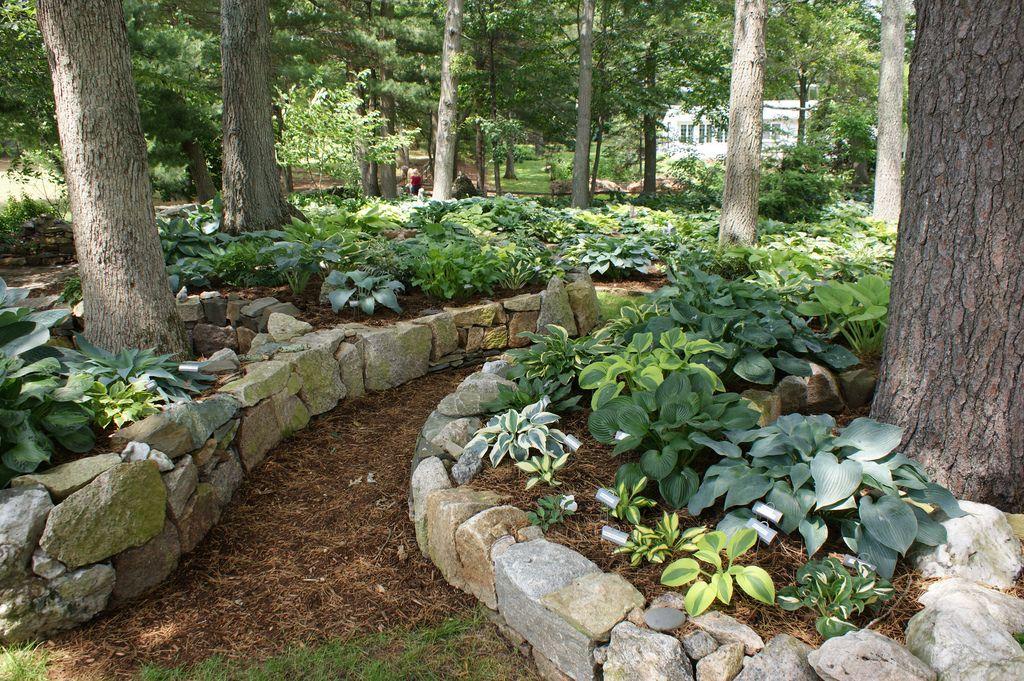 Hosta Garden Curved Stone Edging 2 Shade Garden 400 x 300