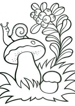 Раскраска Улитка на грибе, скачать и распечатать раскраску ...