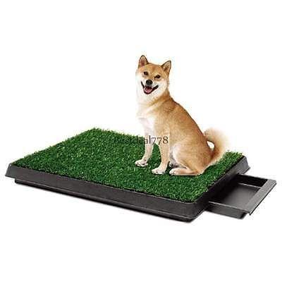 Pet Park Indoor Potty Dog Grass Mat Pad Training Petzoom