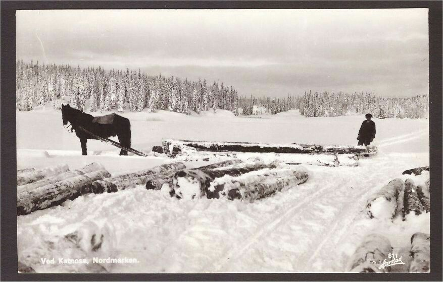Katnosa. Tømmerlunning. Harstad 811 Katnosa gård er et tidligere gårdsbruk som ligger ved østbredden av vannet Katnosa i Nordmarka, i Lunner kommune. Gården eies av Løvenskiold-familien. Det er ingen fastboende på gården mer, bygningene leies ut til ferierende.