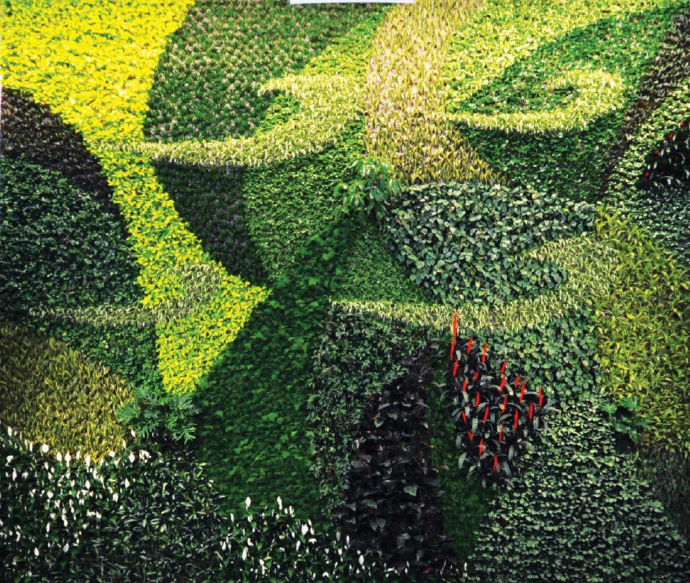 Interior living walls sustainable architecture and for Green wall art