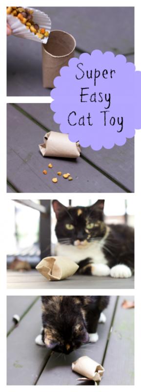 DIY Cat Food Puzzle Toy http://stayingclosetohome.com/diy-cat-food-puzzle-toy/ #ad