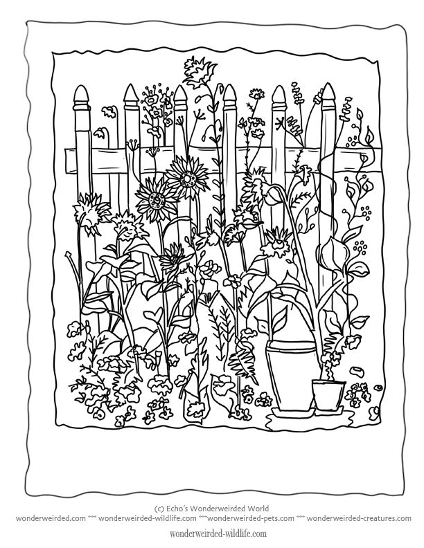 Flower Garden Coloring Sheet 12 Without The Floral Lettering A Little Picket Fence Is Perfect