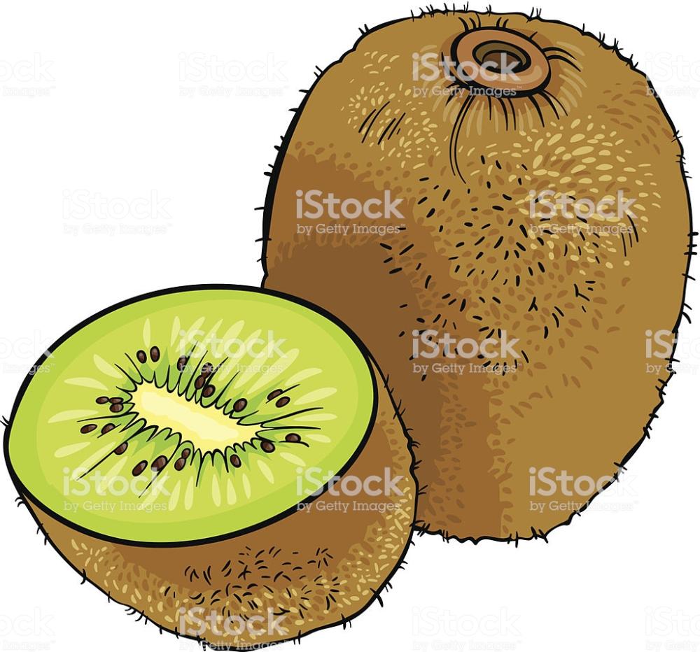 Kiwi Animada Busqueda De Google Dibujos De Frutas Frutas Frutas Y Verduras