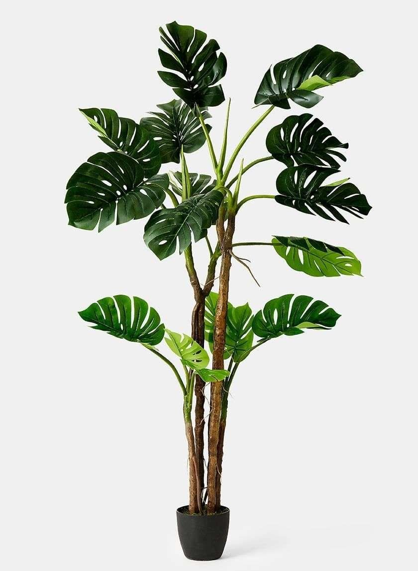 Buy Silk Plants Wholesale Topiaries Boxwoods More Plants