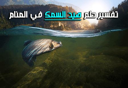 تفسير حلم صيد السمك في المنام In 2020 Animals Interpretation Lockscreen Screenshot