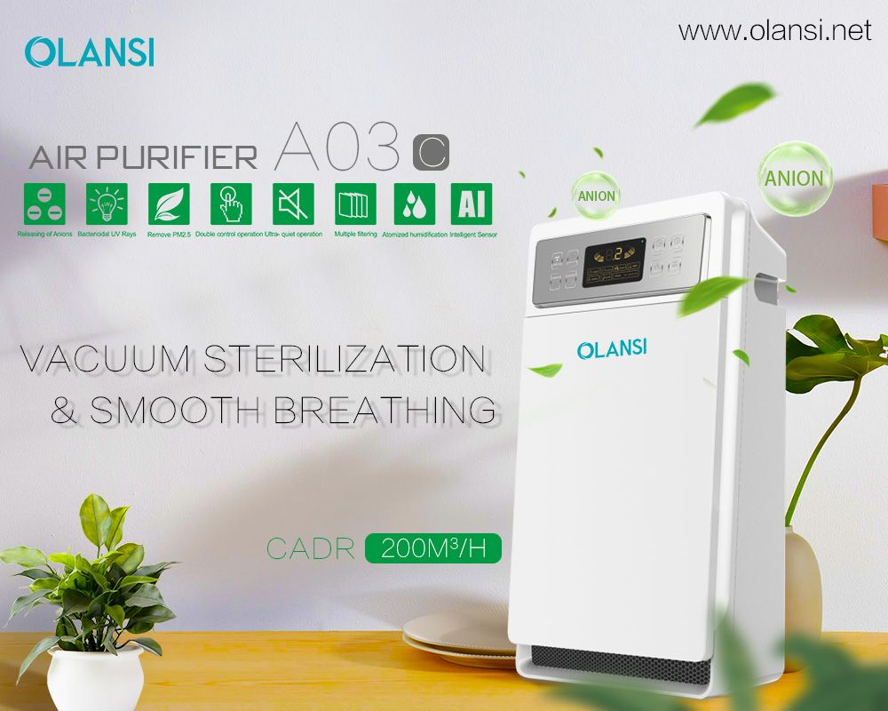 Https Www Olansi Net Why Should We Use Good Air Purifier In Our