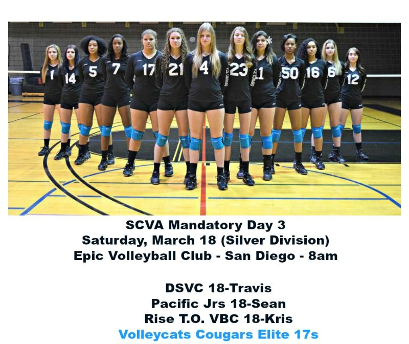 Pin By Volleyball For Life On Las Vegas Volleyball Volleyball Team Photo Editing Photo