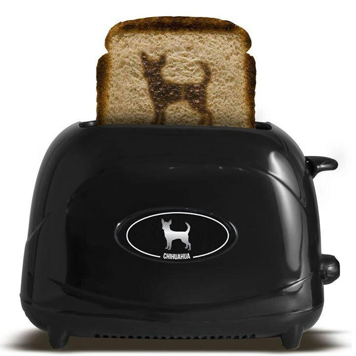 Chihuahua toast