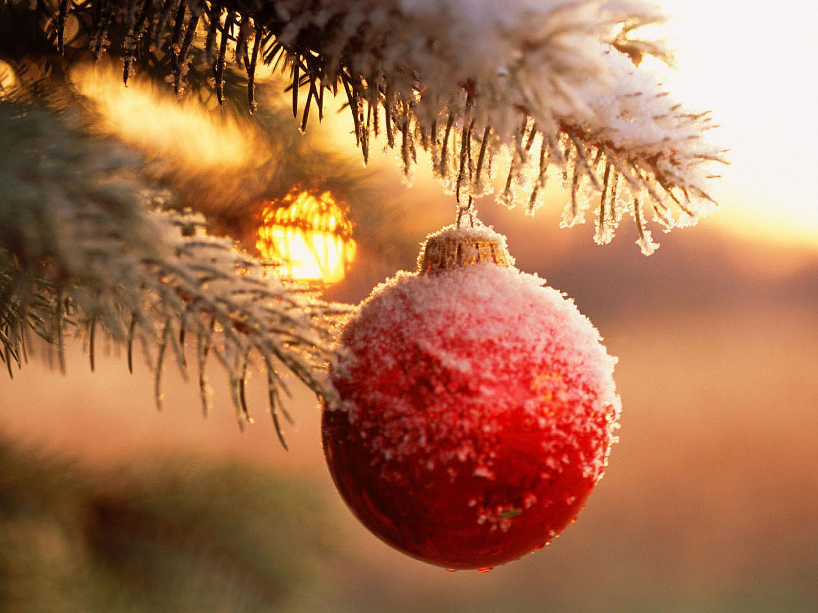 Christmas Ornaments Wallpaper Christmas Pinterest HD Wallpapers Download Free Images Wallpaper [1000image.com]