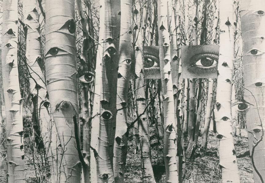 Herbert Bayer (1900-1985): In Search of Times Past, 1959
