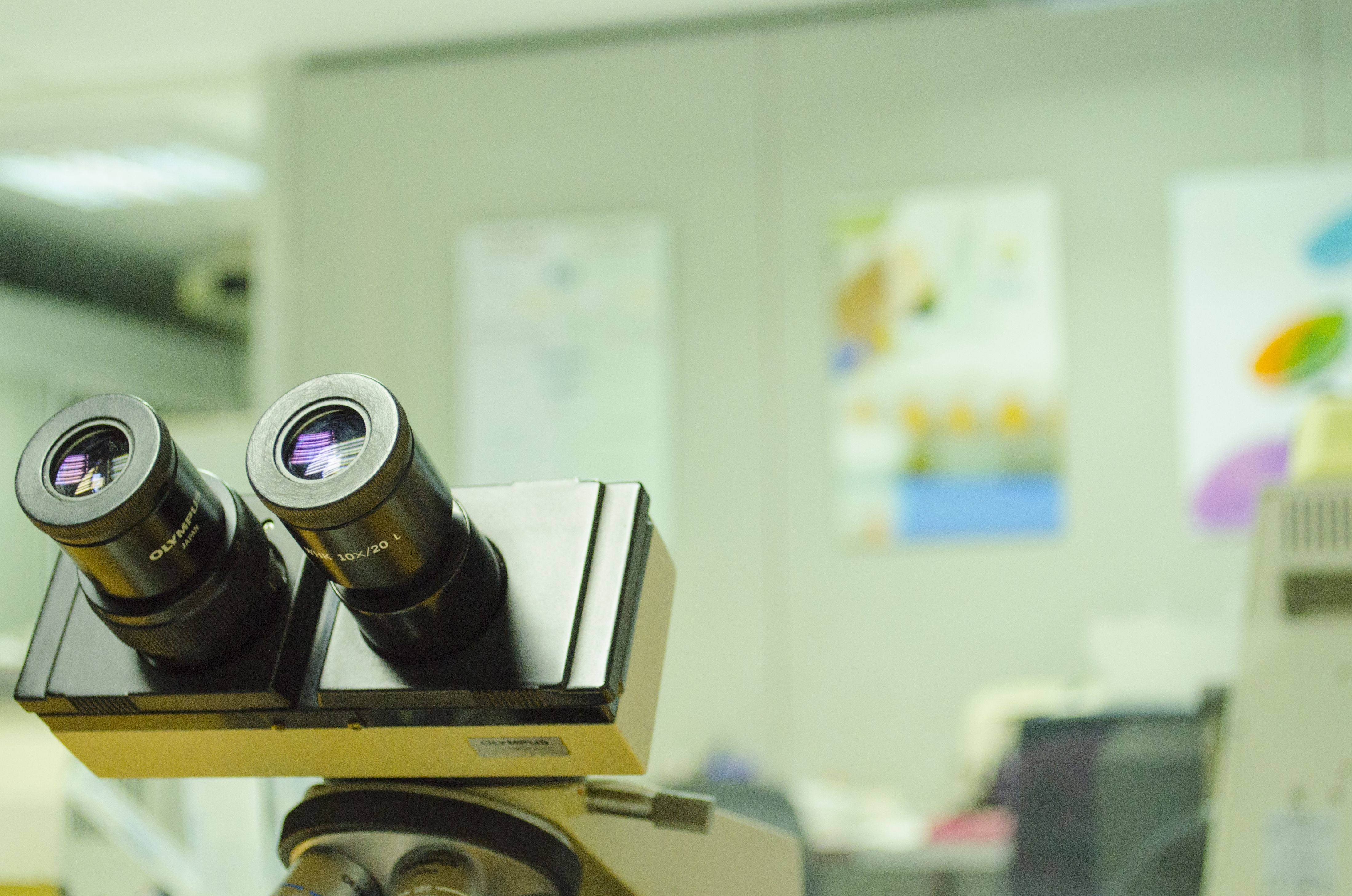Microscopio en Anatomía Patológica de LGS.   LGS ANATOMÍA PATOLÓGICA ...