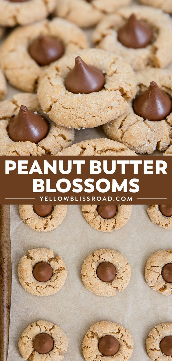 Peanut Butter Blossoms #peanutbutterblossomcookies